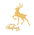 Golden on white decoration vector image vector image