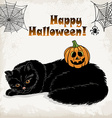 Halloween card template with a cat pumpkin spider vector image