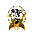 olive oil advertising badge vector image vector image