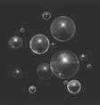 stock color realistic bubble vector image vector image