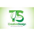 ts green leaf letter design logo eco bio leaf vector image vector image