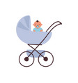 a blue baby carriage with sitting baby vector image