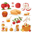 apples healthy applepie with jam and vector image vector image