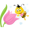 bee collects honey from a tulip - ute vector image vector image