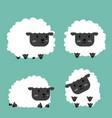cute black little sheep set vector image vector image