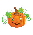 halloween character pumpkin isolated one vector image