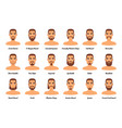 man fashion beards and mustaches vector image vector image