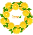 Orange slices with leaves round frame vector image vector image