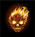 Scary skull on fire vector image vector image