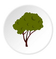 tree with fluffy crown icon circle vector image vector image