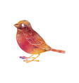 watercolor silhouette of bird vector image vector image