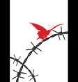barbed wire and butterfly vector image vector image