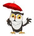 cute cartoon owl with umbrella vector image vector image