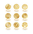 dandelion logo set beautiful nature badge for vector image