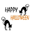 Halloween background with cats vector image