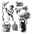 Men and women harvest the grapes in the vineyard vector image vector image