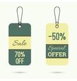 Set price tag vector image