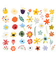 set spring colorful flowers floral vector image vector image