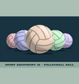 volleyball balls icon game equipment professional vector image