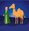 wise king with camel manger characters vector image vector image