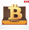 suitcase with cryptocurrency vector image