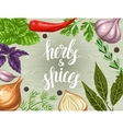 Background design with various herbs and spices vector image vector image