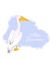 pink pelican waterfowl hello summer hand vector image