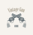 pistols revolvers in vintage style vector image vector image