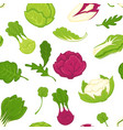 salad lettuces and cabbage vegetables seamless vector image vector image