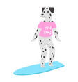 surf dog animal surfer character surfing on vector image vector image
