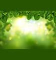 tree leaves border on green fresh bokeh background vector image