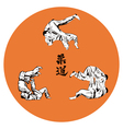 Six wrestlers judo on a red background vector image
