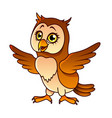 cartoon owl isolated vector image