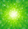 Clover Sunburst Background vector image vector image