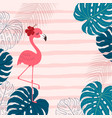 pink flamingo and monstera leaves vector image
