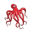 Red octopus animal cartoon character vector image
