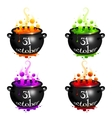 Set of witches cauldrons with colorful brew vector image