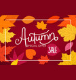 autumn sale calligraphic logo with color fall vector image vector image