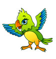 cartoon parrot isolated vector image vector image