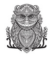 coloring owl vector image