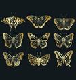 golden butterflies shiny gold decorative vector image vector image