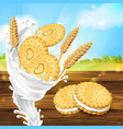 promotion banner for milky cookies brand vector image vector image