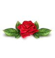 realistic red rose blossom leaf stem set vector image