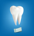 with realistic tooth isolated vector image