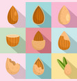 almond walnut oil seed icons set flat style vector image vector image