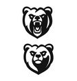 bear mascot black emblem head on white background vector image