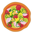 colorful salami pizzaprint vector image vector image