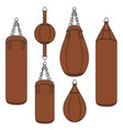 color with a brown punching bag vector image vector image