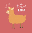 cute lama with lettering no drama lama cartoon vector image
