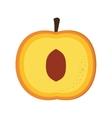 peach half icon vector image